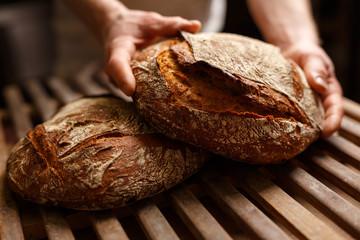 Baker's hands holding artisan bread.